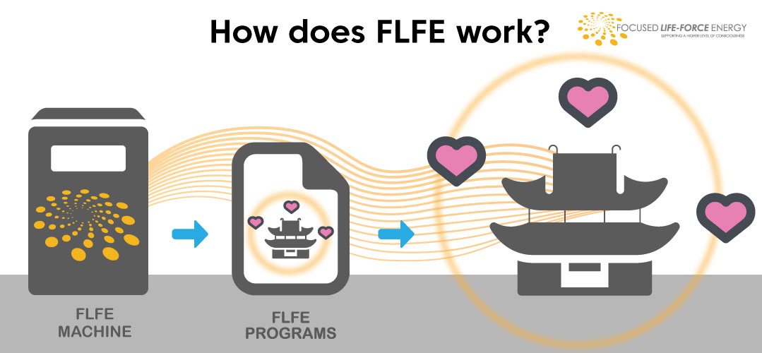 How-does-FLFE-Work-5-2